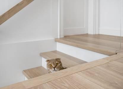 Extra White/3408-stairs-floors_diz M.Noreikiene